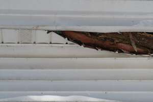 Facia & soffit roof water damage