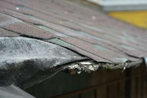 Lifting shingles and distorted roof line are both alarming signs of rainwater runoff damage