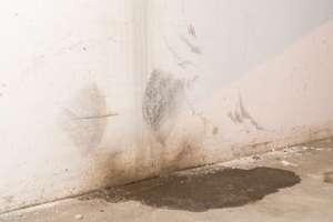 rainwater runoff damage will drain to the basement